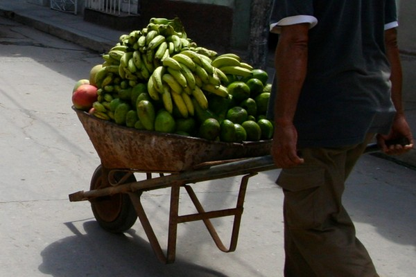 _cubafruit